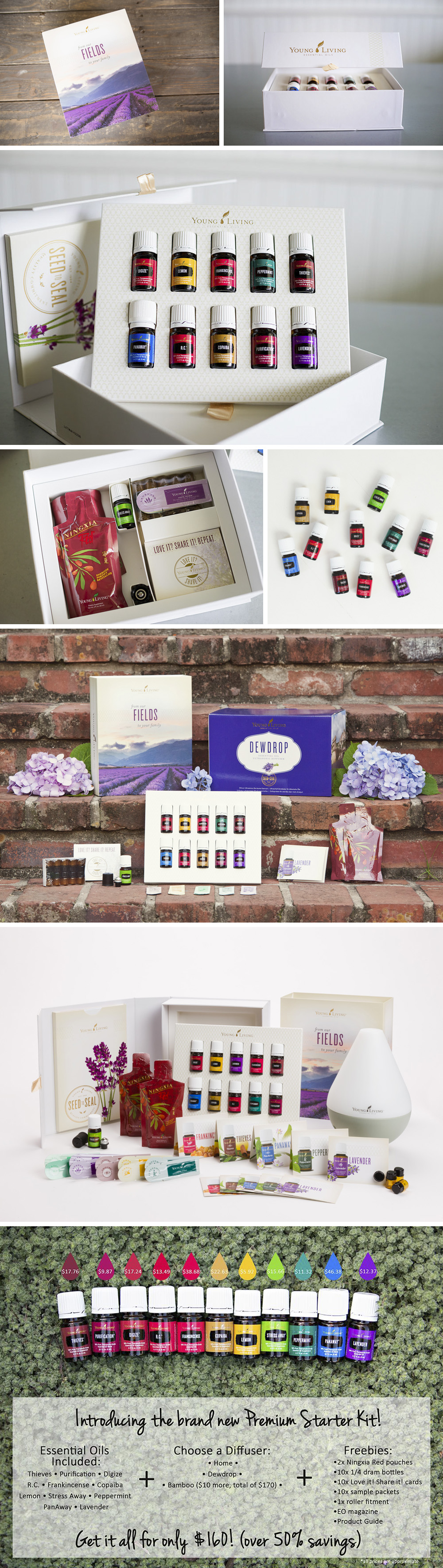 new kit blog post THE NEW YOUNG LIVING ESSENTIAL OILS STARTER KIT