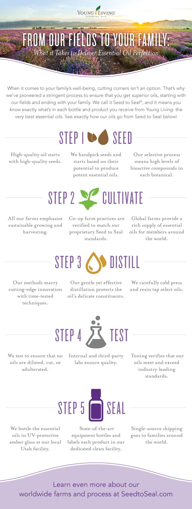 Blog Seed to Seal Infographic US 0316 sk Why Young Living?