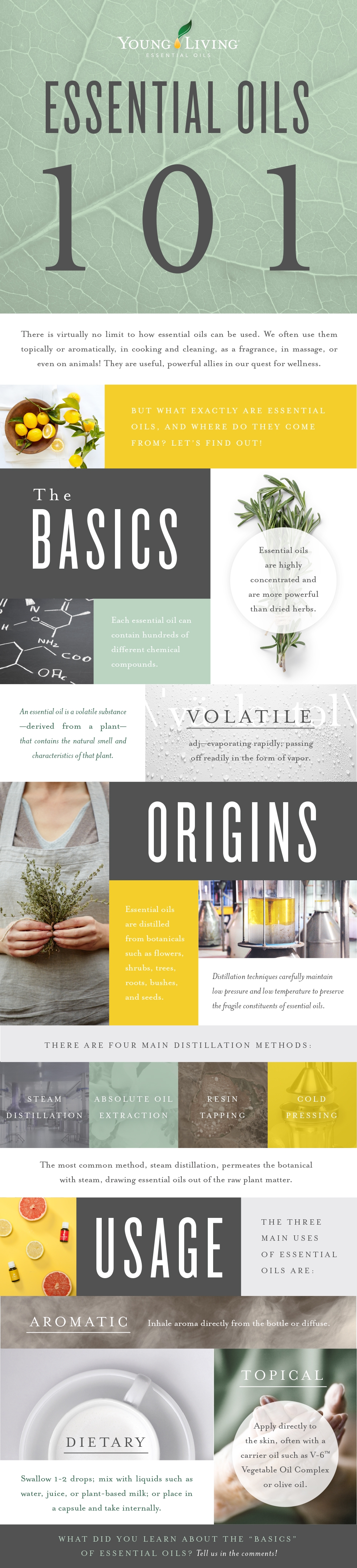 Essential oils 1011 What is an essential oil?